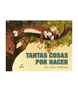 CALVIN HOBBES TANTAS COSAS POR HACER