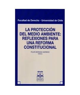 PROTECCION DEL MEDIO AMBIENTE, LA : REFLEXIONES PARA UNA REFORMA CONSTITUCIONAL